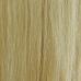 Golden Blonde #24 Halo Hair Extension